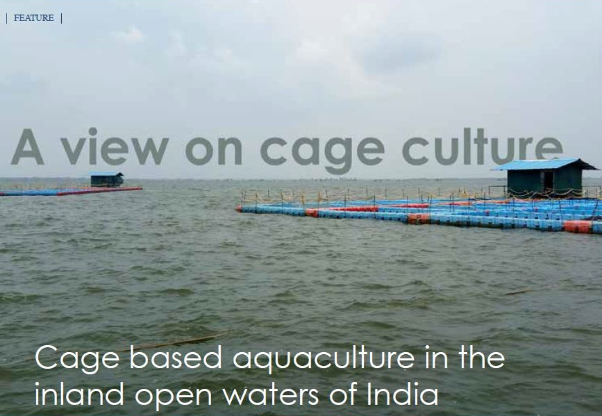 Climefish- Effects of climate change upon aquaculture